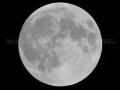 Lune-n&b