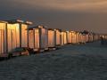 Calais-chalets-plage