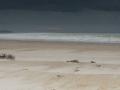 Calais-plage